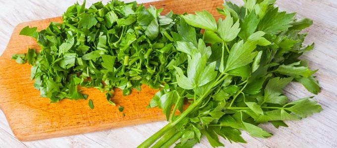 Lovage -A Sirtfood With Benefits