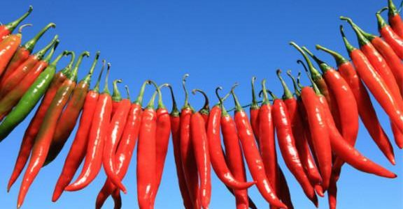 Spice Up Your Sirtfood Diet With Bird's-Eye Chillies